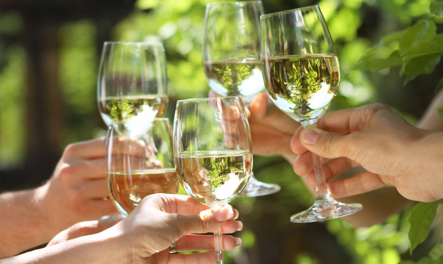 24th Annual Winemakers Celebration Saturday
