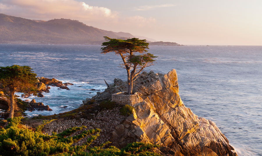 Our New Year's Monterey Bucket List