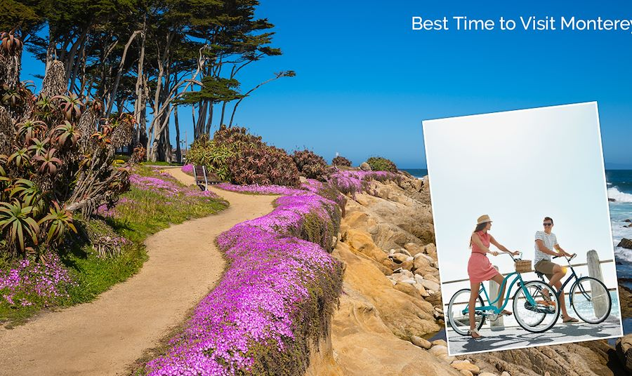 The Best Time to Visit Monterey Is Spring